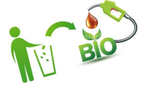 Converting Biomass Waste to Fuel